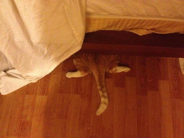 Под кровать
