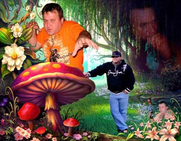 Сделано под грибами